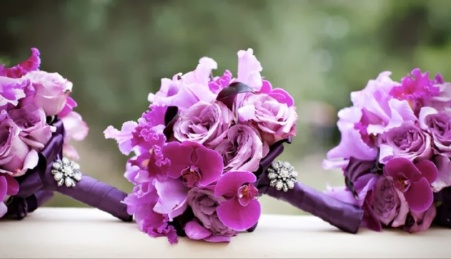 Orchid Wedding Theme | Wedding Theme | Dream Weddings | EventDazzle